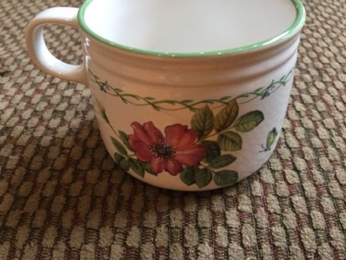 Studio Nova by Mikasa~Garden Bloom~Coffee/Tea Cup