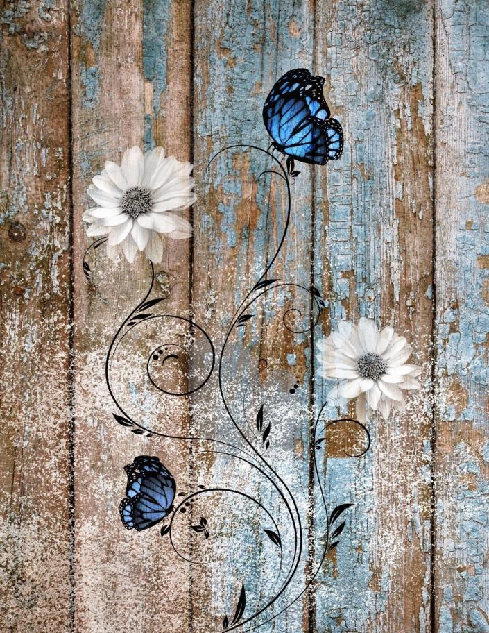 Rustic Modern Wall Pictures, Flower Butterflies, Farmhouse/Country Wall Art
