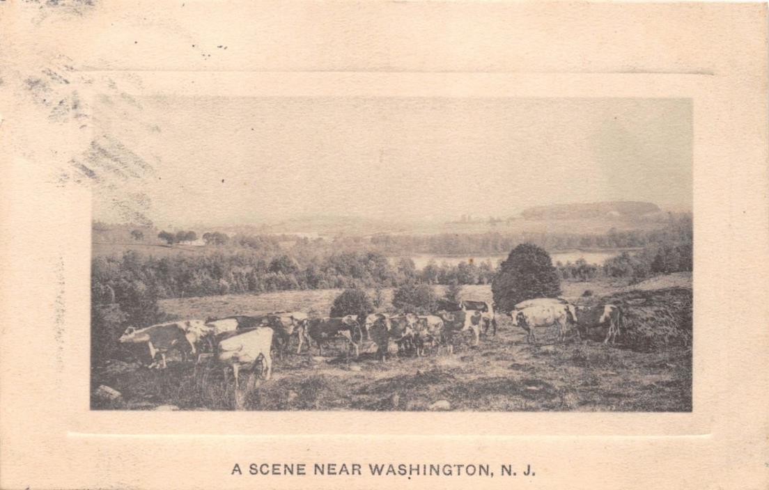 WASHINGTON NJ~A SCENE NEARBY~ARTINO PUBL POSTCARD 1914
