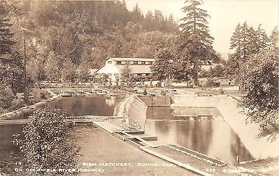 Bonneville Oregon~Fish Hatchery on Columbia River Hwy~1930s Cross & Dimmit RPPC