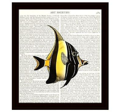 Fish Dictionary Art Print 8x10 Angelfish Nautical Home Decor Vintage Book Page