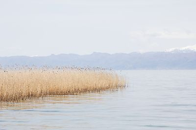 Lake Ohrid, Macedonia Landscape Photograph 8x10