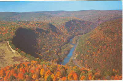 Pennsylvania Grand Canyon, PA Postcard p11172