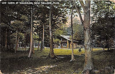 New Holland Michigan~Log Cabin Surrounded by Forest @ Waukazoo~c1910 Postcard