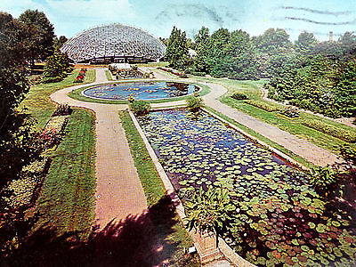Climatron Tropical Greenhouse Saint Louis MO Shaw's Garden Hybrid Water Lilies