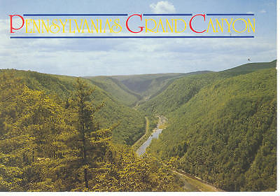 Pennsylvania Grand Canyon Postcard cs0989