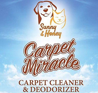 Carpet Carpet Cleaning Machine Accessories Miracle Carpet Cleaner and Deodorizer