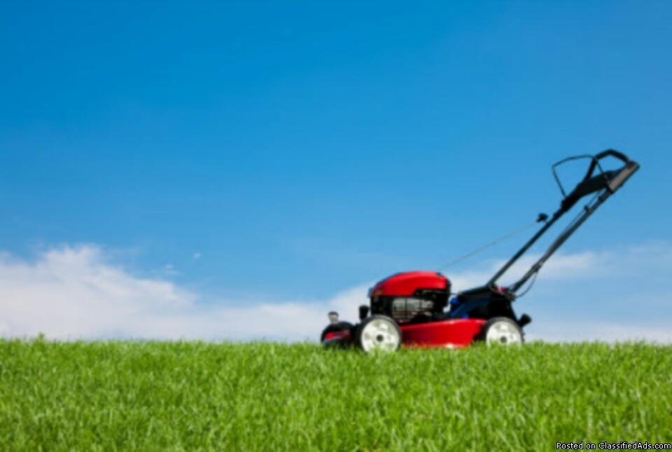 Does your lawn need a cut?