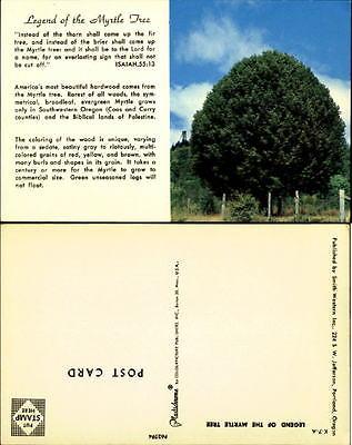 Legend of Myrtle Tree Southwestern Oregon 1970s bible quote Isaiah 55:13