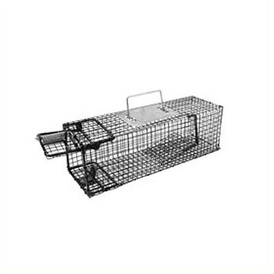 Live Humane Animal Trap Cage Collapsible Rabbit Rat Chipmunks 1 Door Mesh