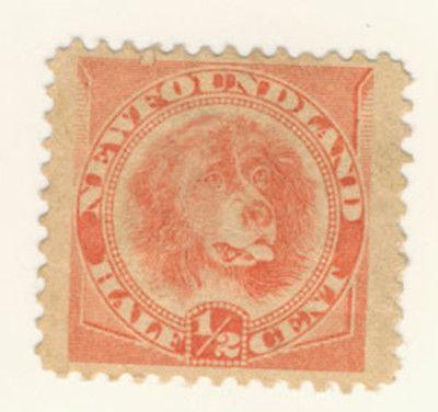 Newfoundland Stamp Scott # 57 1/2-Cent Dog MNG