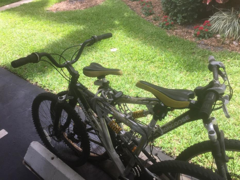 two bikes $40 for both