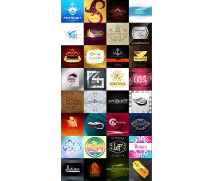 !!!! top Quality Logos & Graphic Design Miami