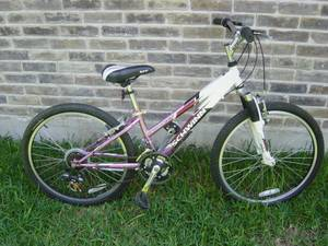 Schwinn Girls Bike (Locke Hill Selma @ Huebner)