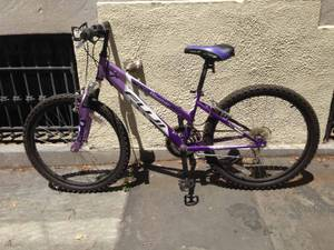 Fuji Blaster mountain bike