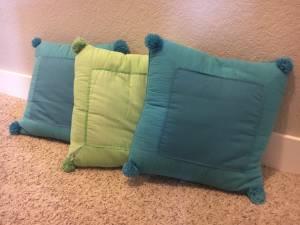 Pottery Barn pillows (Pf)