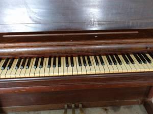 piano( Wurlitzer) (fern creek)