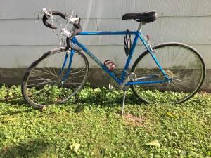 Schwinn Road Bike (Hamilton)
