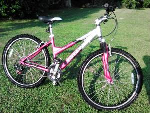 ladies Schwinn mountain bike (Whitehall)