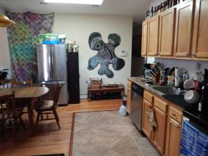 Temple U. Area ~*~ Room, Private Bath + shared common area (1739 W.