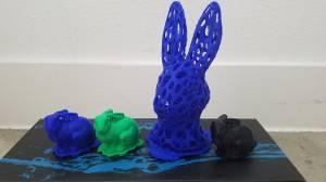 3-D printed rabbits