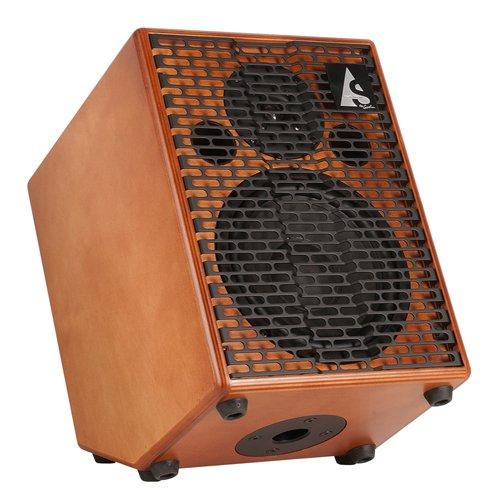 Godin Guitars 039135 150-Watt Acoustic Guitar Amplifier, Wood