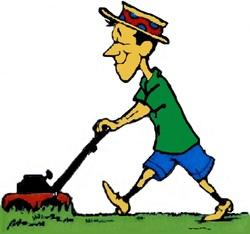 Cheap Lawn mowing and debris cleanup
