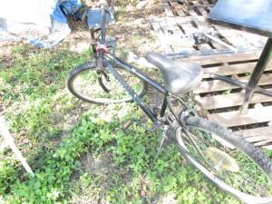 Mountain Bike (South East)