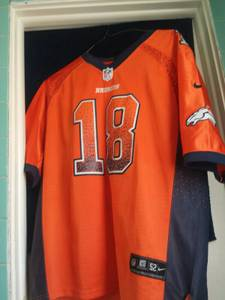 official nfl jersey (Cheyenne)